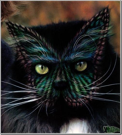paintcat-32