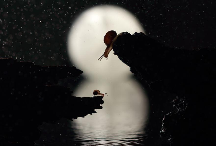Лунная Река