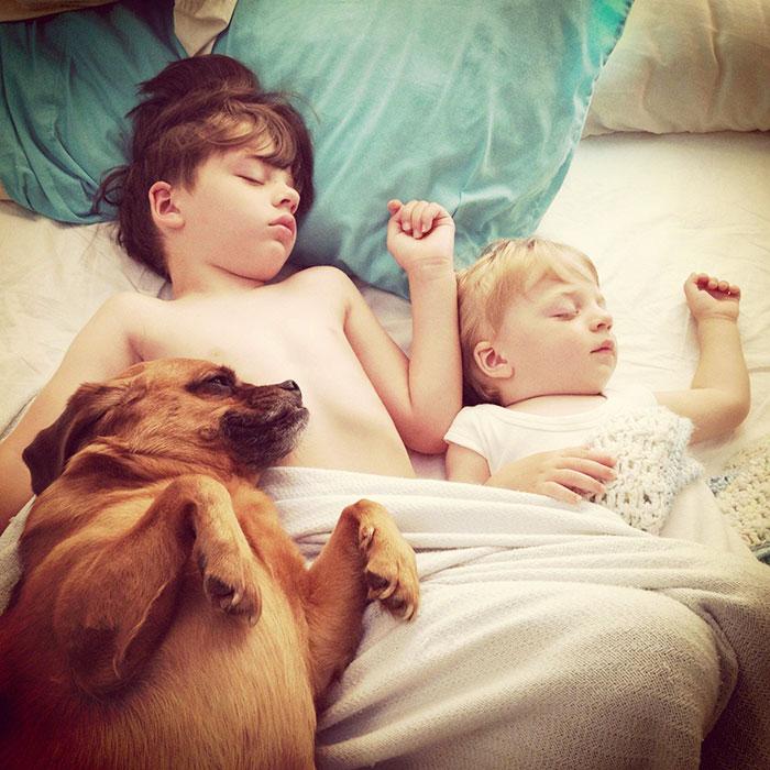 спящие друзья