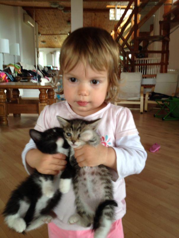 ALEX-si-pisicii__605