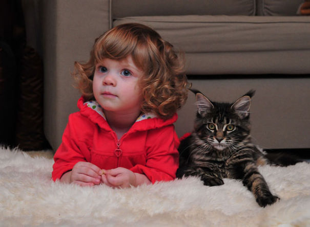 kids-and-cats-71__605