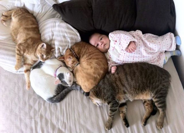 kids-with-cats-23__605