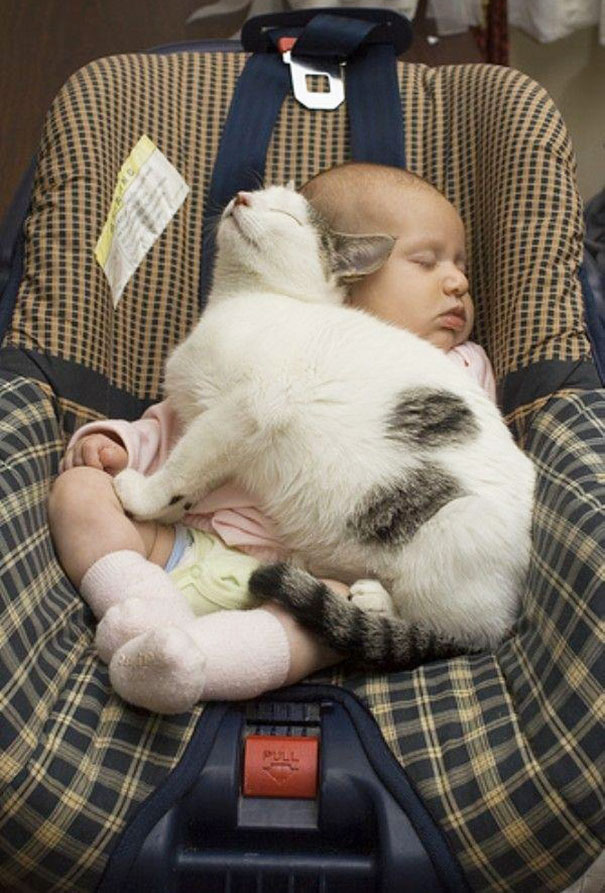kids-with-cats-24__605