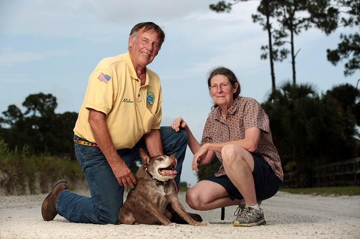 Mandatory Credit: Photo by Dan Callister/REX Shutterstock (4913667i) Quasi Modo with owners Virginia Sayre and her husband Mike Carroll Hunchback dog Quasi Modo wins 'world's ugliest dog' competition, Loxahatchee, Florida, America - 06 Jul 2015 *Full story: http://www.rexfeatures.com/nanolink/qoy6 Meet hunchback dog Quasi Modo who has just been crowned the 'ugliest' dog in the world. The 10-year-old pit bull-Dutch shepherd mix was born with spinal problems, which is the reason for her unusual look. She was abandoned at an animal shelter before being adopted by vet Virginia Sayre and her husband Mike Carroll from Loxahatchee, Florida. Quasi Modo has a short, round body with long legs. Her head disappears into her neck and body as she is missing vertebrae and the remainder are fused together. She fought of competition from 25 other dogs to win the title of ugliest dog at the event at the Sonoma-Marin Fairgrounds in Petaluma, California that 'applauds imperfection'.