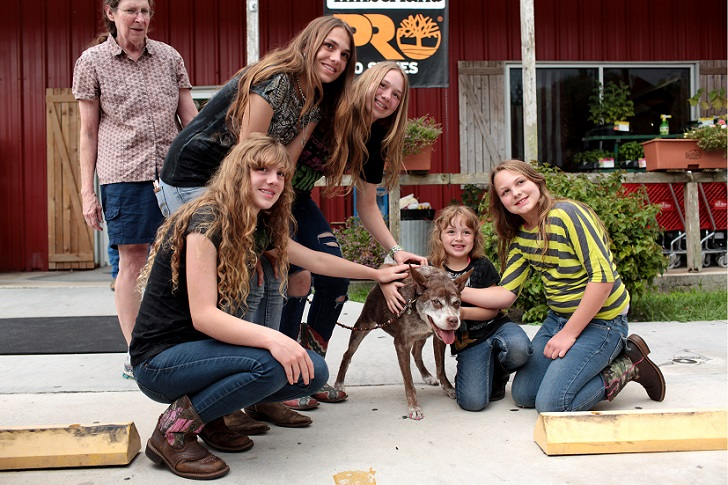 Hunchback dog Quasi Modo wins 'world's ugliest dog' competition, Loxahatchee, Florida, America - 06 Jul 2015