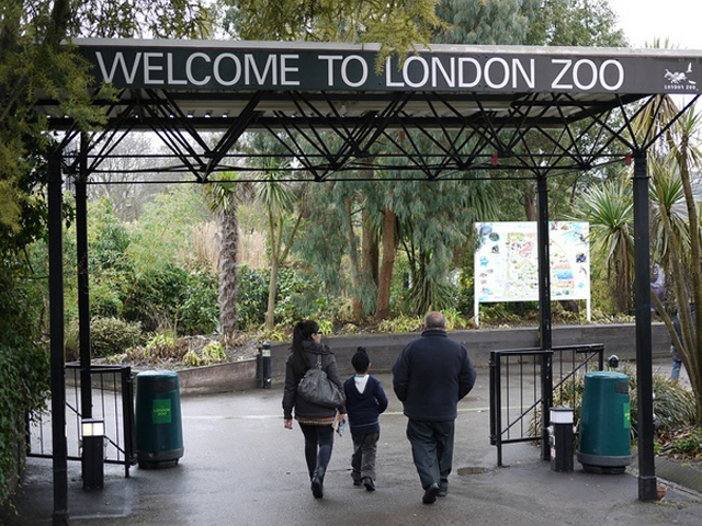 london_zoo01_zoom