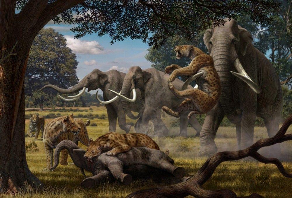 mauricio-anton-smilodon-and-columbian-mammoth
