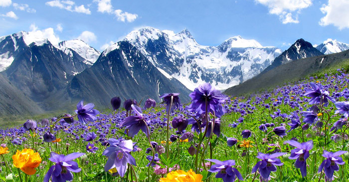 Altaj-hegyseg-1