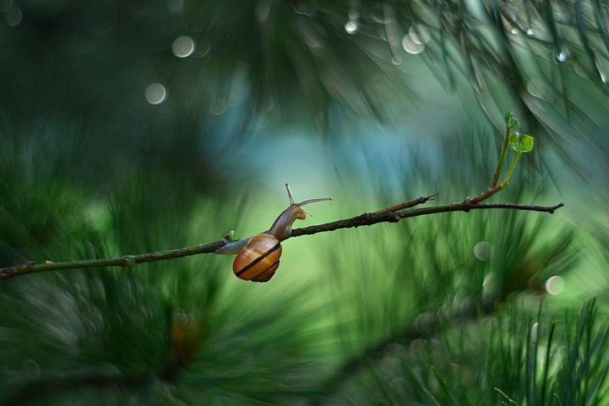 Rain-Story-575fbbb175f8c__880