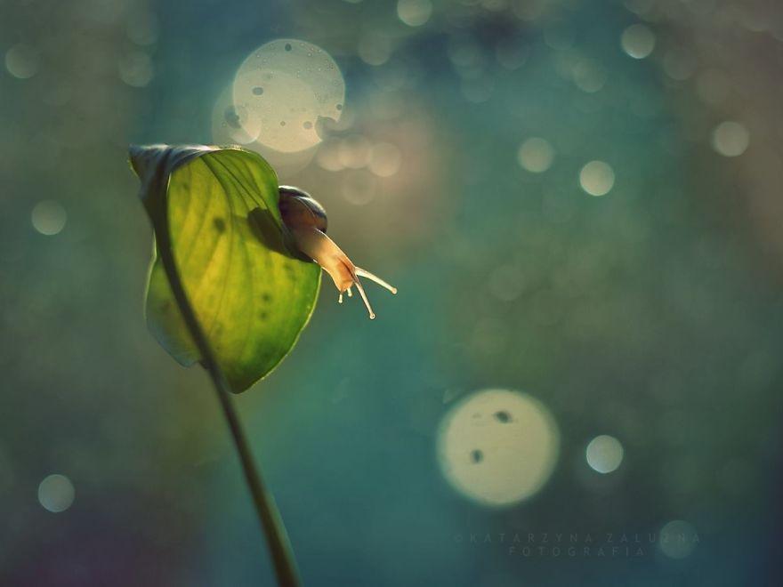 Rain-Story-575fbbdebf7d9__880