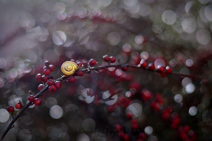 Rain-Story-575fbbe0cab02__880