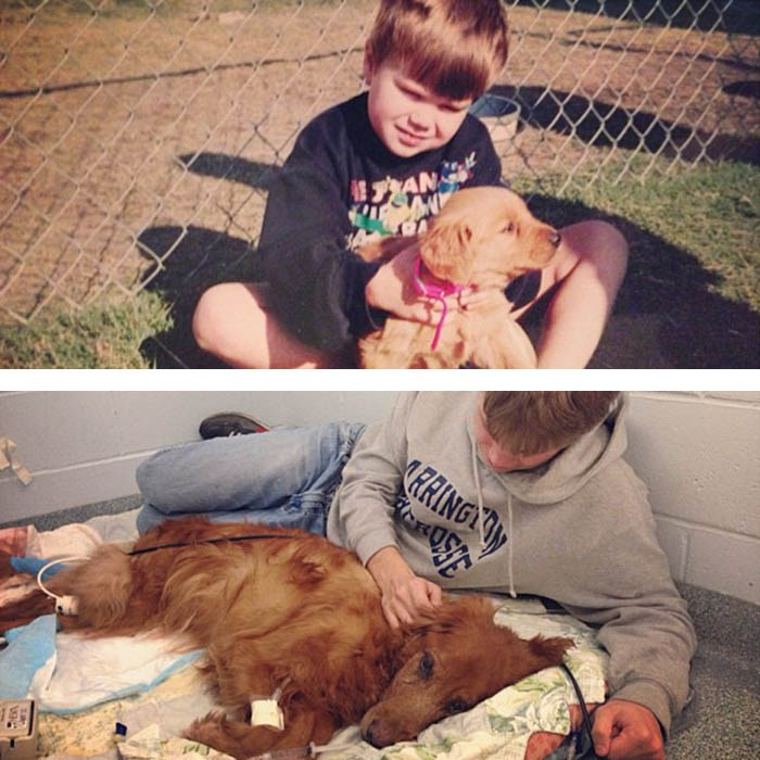 before-after-pets-growing-old-first-last-photos-vinegret-13