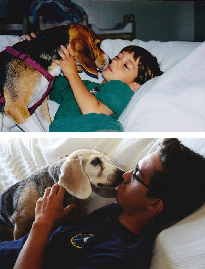 before-after-pets-growing-old-first-last-photos-vinegret-8