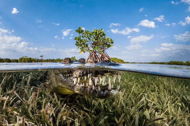 siena-international-photo-awards-travel-winners-vinegret-1